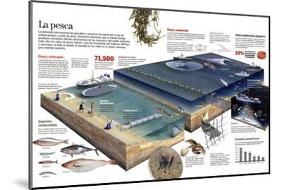 Infografía De Las Diversas Técnicas De Pesca Artesanal Y Comercial--Mounted Poster