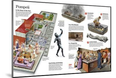 Infographic About Everyday Life in the Roman City of Pompeii--Mounted Poster
