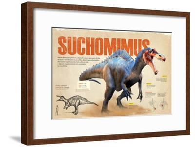 Infografía Sobre El Suchomimus, Dinosaurio Piscívoro Del Cretácico, Era Mesozoica--Framed Poster