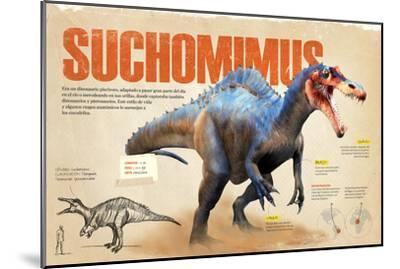 Infografía Sobre El Suchomimus, Dinosaurio Piscívoro Del Cretácico, Era Mesozoica--Mounted Poster