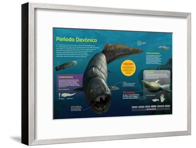 Infografía De Los Peces Que Habitaron a Lo Largo Del Período Devónico (Hace--Framed Poster