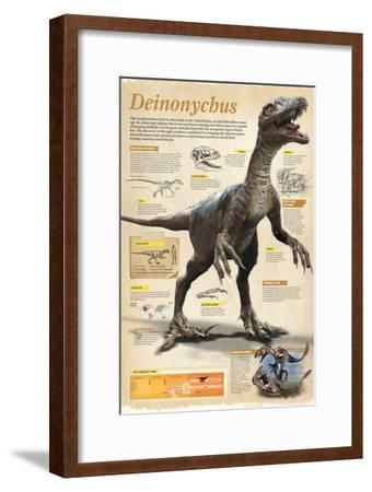 Infographic of the Deinonychus, a Theropod Dinosaur That Lived During the Early Cretaceous Period--Framed Poster