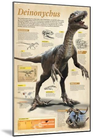 Infographic of the Deinonychus, a Theropod Dinosaur That Lived During the Early Cretaceous Period--Mounted Poster