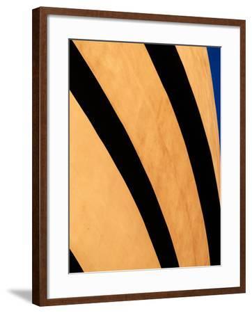 Gugenheim-Steven Maxx-Framed Photographic Print