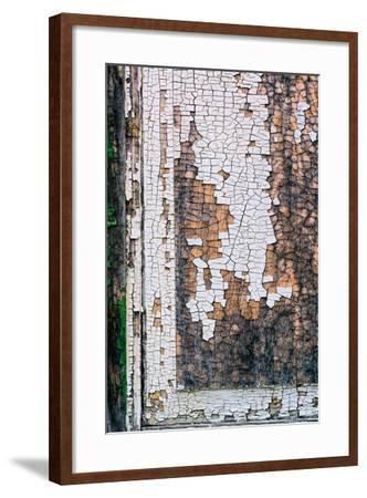Shackscape #1-Steven Maxx-Framed Premium Photographic Print