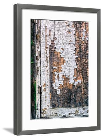 Shackscape #1-Steven Maxx-Framed Photographic Print