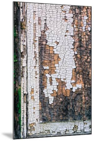 Shackscape #1-Steven Maxx-Mounted Photographic Print