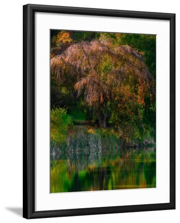 Fall Reflection-Steven Maxx-Framed Photographic Print