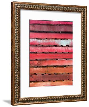 Pallettes #3-Steven Maxx-Framed Photographic Print
