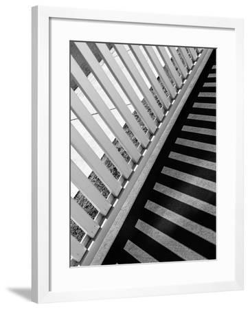 Fence Graphic-Steven Maxx-Framed Photographic Print