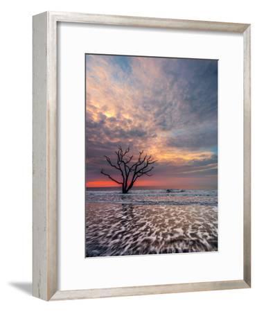 Boneyard-Steven Maxx-Framed Photographic Print