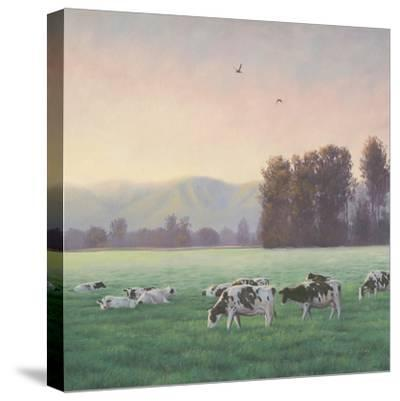 Farm Life V-James Wiens-Stretched Canvas Print