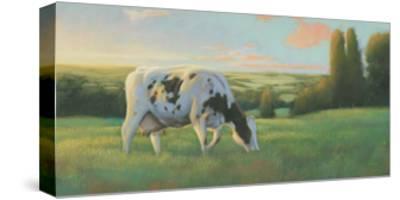 Farm Life I-James Wiens-Stretched Canvas Print