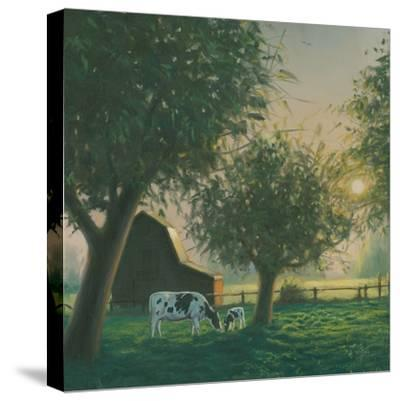 Farm Life IV-James Wiens-Stretched Canvas Print