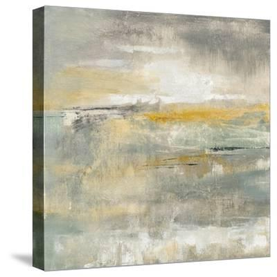 February Sky-Silvia Vassileva-Stretched Canvas Print