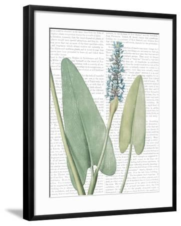 Summer Botanicals IV-Wild Apple Portfolio-Framed Art Print