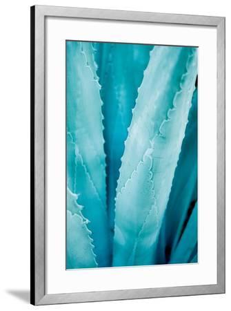 Abstract Agava III Color-Elizabeth Urquhart-Framed Art Print