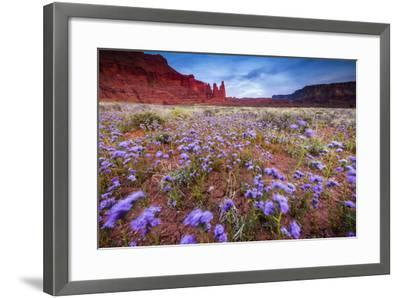 Purple Flowers Bloom, Early Spring, The Desert Eco-System Surrounding Fisher Towers Near Moab, Utah-Jay Goodrich-Framed Photographic Print