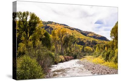 Dolores River, Colorado, USA: The River With Prime Fall Colors-Axel Brunst-Stretched Canvas Print