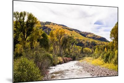 Dolores River, Colorado, USA: The River With Prime Fall Colors-Axel Brunst-Mounted Photographic Print