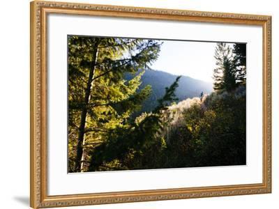 Mt Biker Rides Singletrack On Putt Putt Trail Across Valley From Snow King Ski Area, Jackson, WY-Jay Goodrich-Framed Photographic Print