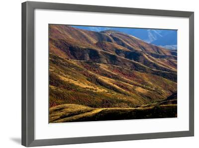 Mt. Nebo Loop Scenic Byway, Utah: This Byway Corsses The Uinta NF Between Nephi And Payson, Utah-Ian Shive-Framed Photographic Print