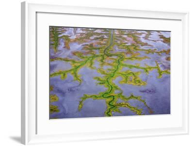 The Channels Of Tide Lines Exposed At Low Tide Along The Cook Inlet Near Anchorage Alaska-Jay Goodrich-Framed Photographic Print