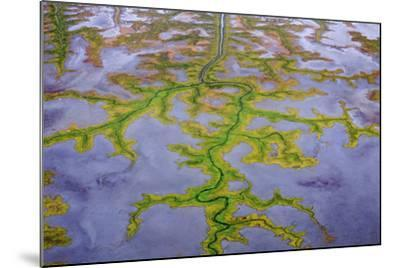 The Channels Of Tide Lines Exposed At Low Tide Along The Cook Inlet Near Anchorage Alaska-Jay Goodrich-Mounted Photographic Print