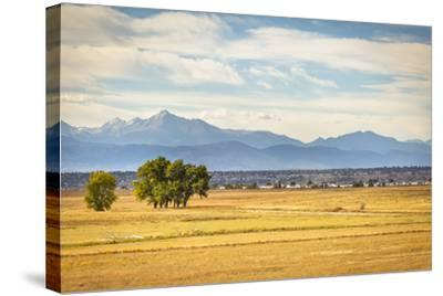 Denver, CO, USA: Landscape Of Rocky Mountain Arsenal National Wildlife Refuge With Rocky Mts Bkgd-Axel Brunst-Stretched Canvas Print