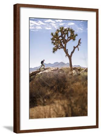 Joshua Tree National Park, California, USA: A Male Hiker Walking Along Behind A Joshua Tree-Axel Brunst-Framed Photographic Print