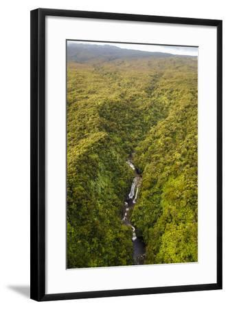 TNC Waikamoi Preserve, Maui, Hawaii, USA: Nature Conservancy's Waikamoi Preserve, From Helicopter-Axel Brunst-Framed Photographic Print