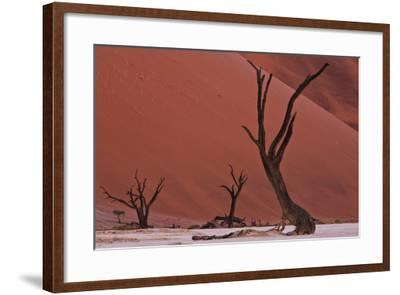 Muted Rust Colored Dunes Silhouettes Of Dead Acacia Trees Of Deadvlei Pan Abstract Landscapes Photographic Print By Karine Aigner Art Com