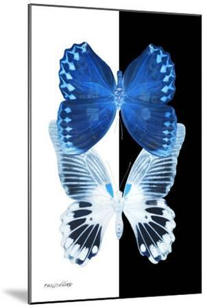 Miss Butterfly Duo Memhowqua II - X-Ray B&W Edition-Philippe Hugonnard-Mounted Photographic Print