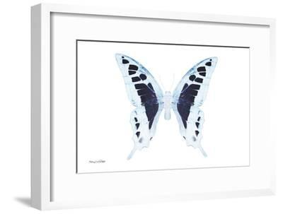 Miss Butterfly Cloanthus - X-Ray White Edition-Philippe Hugonnard-Framed Photographic Print