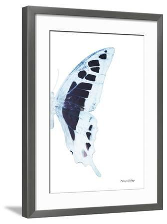 Miss Butterfly Cloanthus - X-Ray Right White Edition-Philippe Hugonnard-Framed Photographic Print
