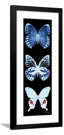 Miss Butterfly X-Ray Black Pano II-Philippe Hugonnard-Framed Photographic Print
