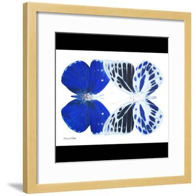 Miss Butterfly Duo Priopomia Sq - X-Ray B&W Edition-Philippe Hugonnard-Framed Photographic Print