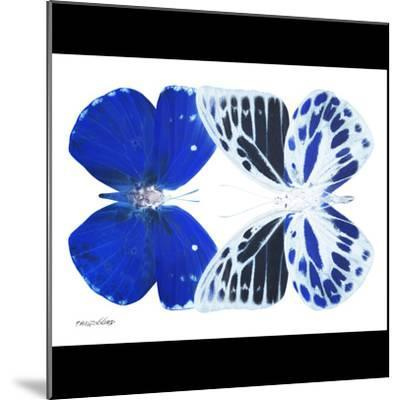 Miss Butterfly Duo Priopomia Sq - X-Ray B&W Edition-Philippe Hugonnard-Mounted Photographic Print