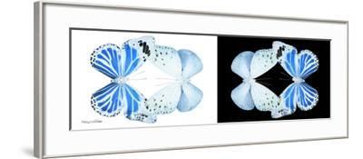 Miss Butterfly Duo Salateuploea Pan - X-Ray B&W Edition-Philippe Hugonnard-Framed Photographic Print