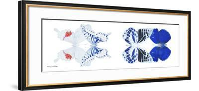 Miss Butterfly X-Ray Duo White Pano V-Philippe Hugonnard-Framed Photographic Print