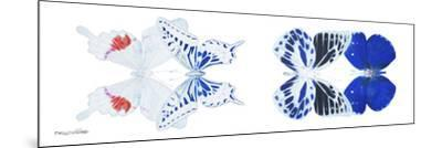 Miss Butterfly X-Ray Duo White Pano V-Philippe Hugonnard-Mounted Photographic Print