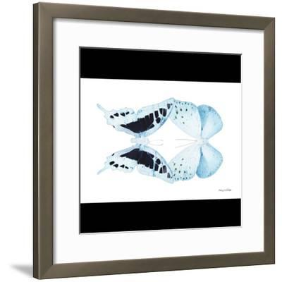 Miss Butterfly Duo Cloanthaea Sq - X-Ray B&W Edition-Philippe Hugonnard-Framed Photographic Print