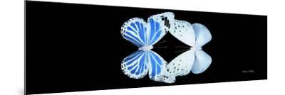 Miss Butterfly Duo Salateuploea Pan - X-Ray Black Edition-Philippe Hugonnard-Mounted Photographic Print