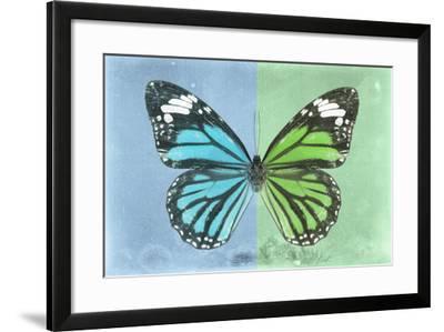 Miss Butterfly Genutia Profil - Blue & Green-Philippe Hugonnard-Framed Photographic Print