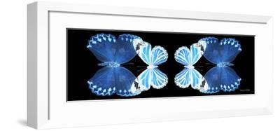 Miss Butterfly Duo Stichatura Pan - X-Ray Black Edition II-Philippe Hugonnard-Framed Photographic Print
