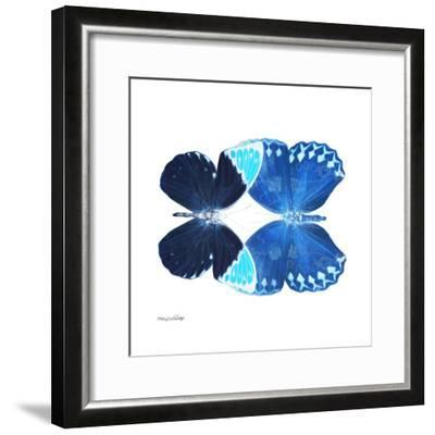 Miss Butterfly Duo Formoia Sq - X-Ray White Edition-Philippe Hugonnard-Framed Photographic Print