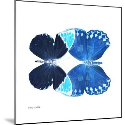 Miss Butterfly Duo Formoia Sq - X-Ray White Edition-Philippe Hugonnard-Mounted Photographic Print