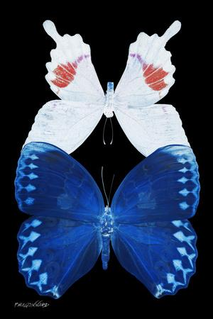 Miss Butterfly Duo Formohermos II - X-Ray Black Edition-Philippe Hugonnard-Framed Photographic Print