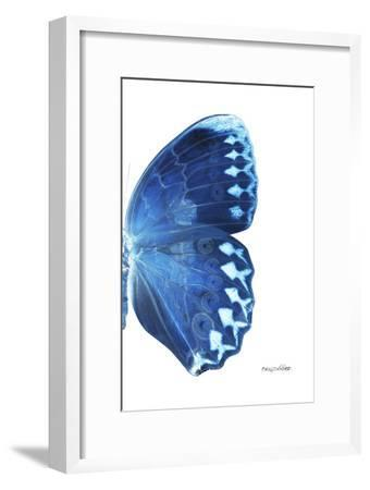 Miss Butterfly Formosana - X-Ray Right White Edition-Philippe Hugonnard-Framed Photographic Print