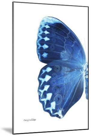 Miss Butterfly Formosana - X-Ray Left White Edition-Philippe Hugonnard-Mounted Photographic Print